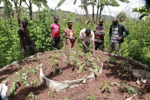 Rwanda Multi-Value Chain & Enterprise Development