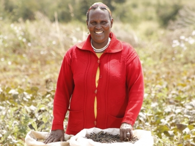 Ms. Hakule, increases income by 28% from farming drought tolerant and highly market-demanded Green grams in Northern Kenya