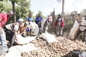 Enhancing Market Access for Irish Potato Farmers & Traders Project (EMAIP)