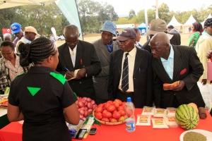 KENYA | Semi-Arid Region Commercialization