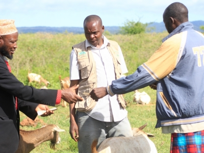 An early weather warning alert results to a Commercial Village response meeting enabling Agro-pastoralists sell livestock at high prices of about 166% more than the selling price of drought-affected livestock