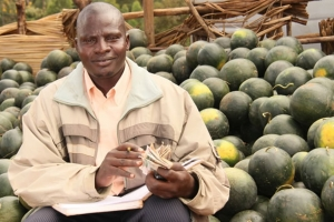 KENYA | Horticulture Competitiveness Project (KHCP)