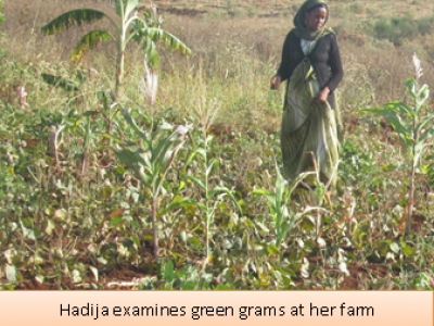 Exposure to Good Agricultural Practices, enables Mrs. Hadija Guyo's yield increase by 900%