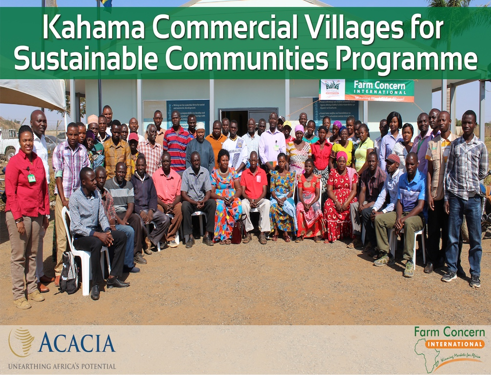TANZANIA | Commercial Villages for Community Sustainability in Kahama